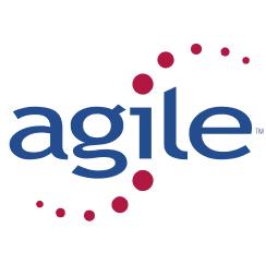 Logo formation Agile
